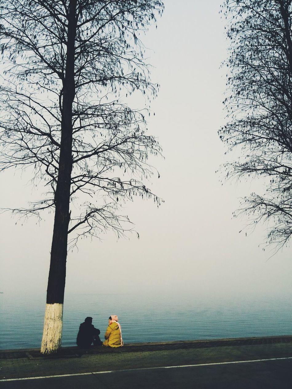 Hugging A Tree Eastlake Wuhan