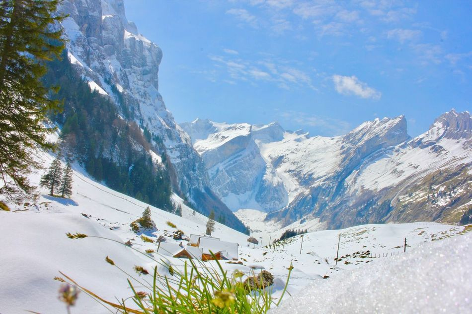 Mountain Snow Nature Beauty In Nature Winter Cold Temperature Sky Scenics Outdoors Mountain Range Landscape No People Nature Tree Day EyeEmNewHere