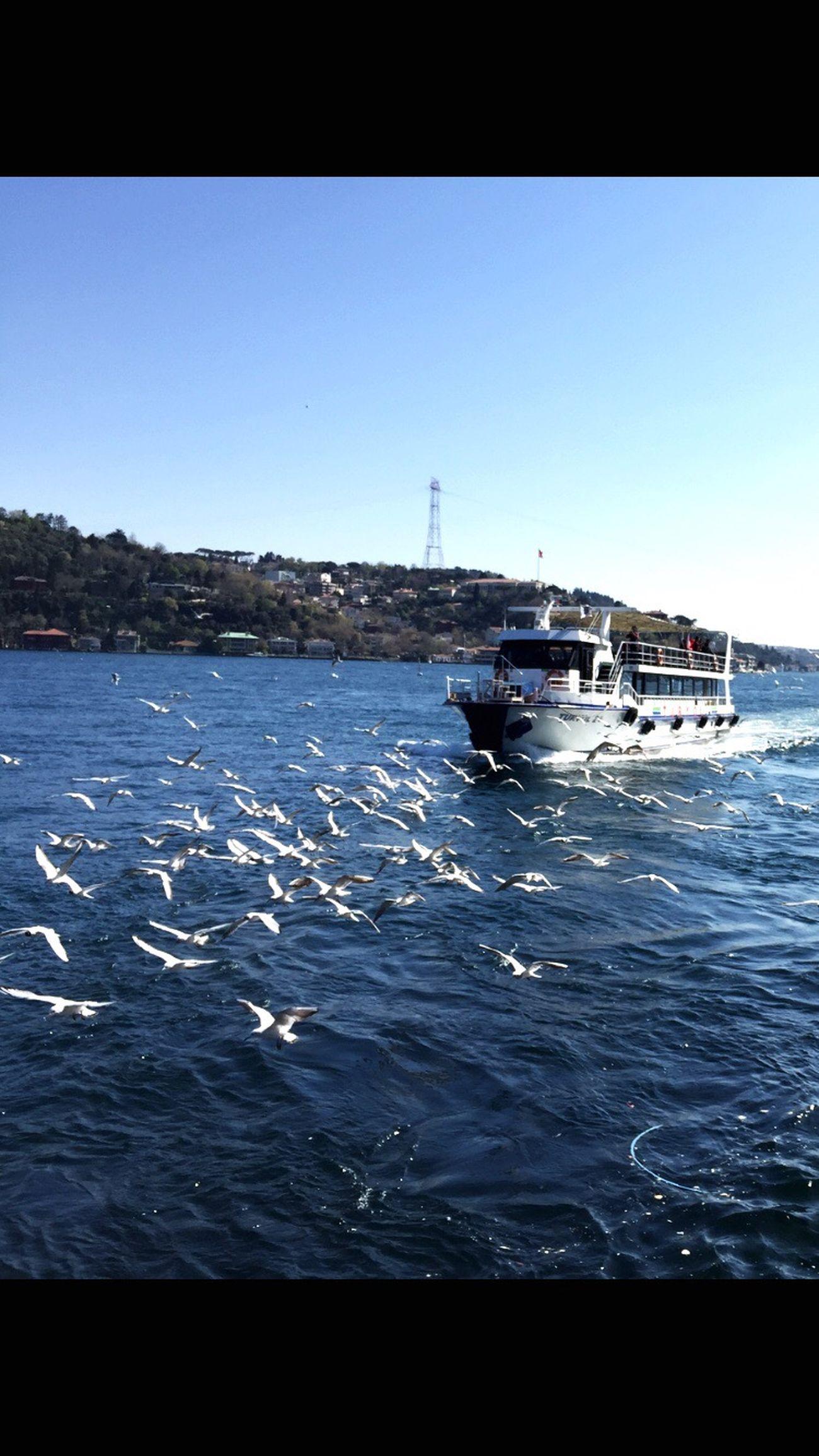 Istanbul Turkey Istanbul Istanbul - Bosphorus Istanbulove Bebek Sea Like Likeforlike Comeseeturkey Touristic Wonderful Love Millennial Pink EyeEmNewHere
