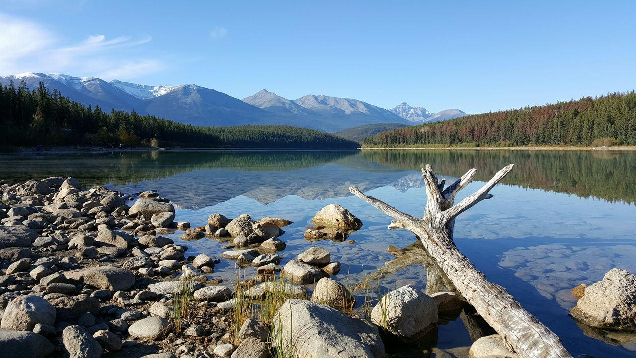 Mountain Tranquil Scene Water Lake Mountain Range Scenics Tranquility Reflection Beauty In Nature Majestic Blue Idyllic Non-urban Scene Travel Destinations Nature Calm Physical Geography Sky Tourism Wood Driftwood Pyramid Lake Jasper Alberta Canada