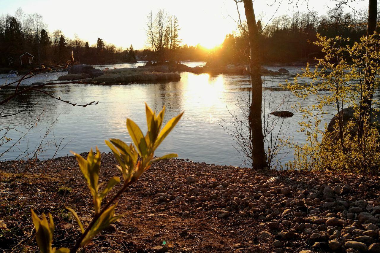 Sunset Evening Light Evening Sun Water River Spring HuaweiP9