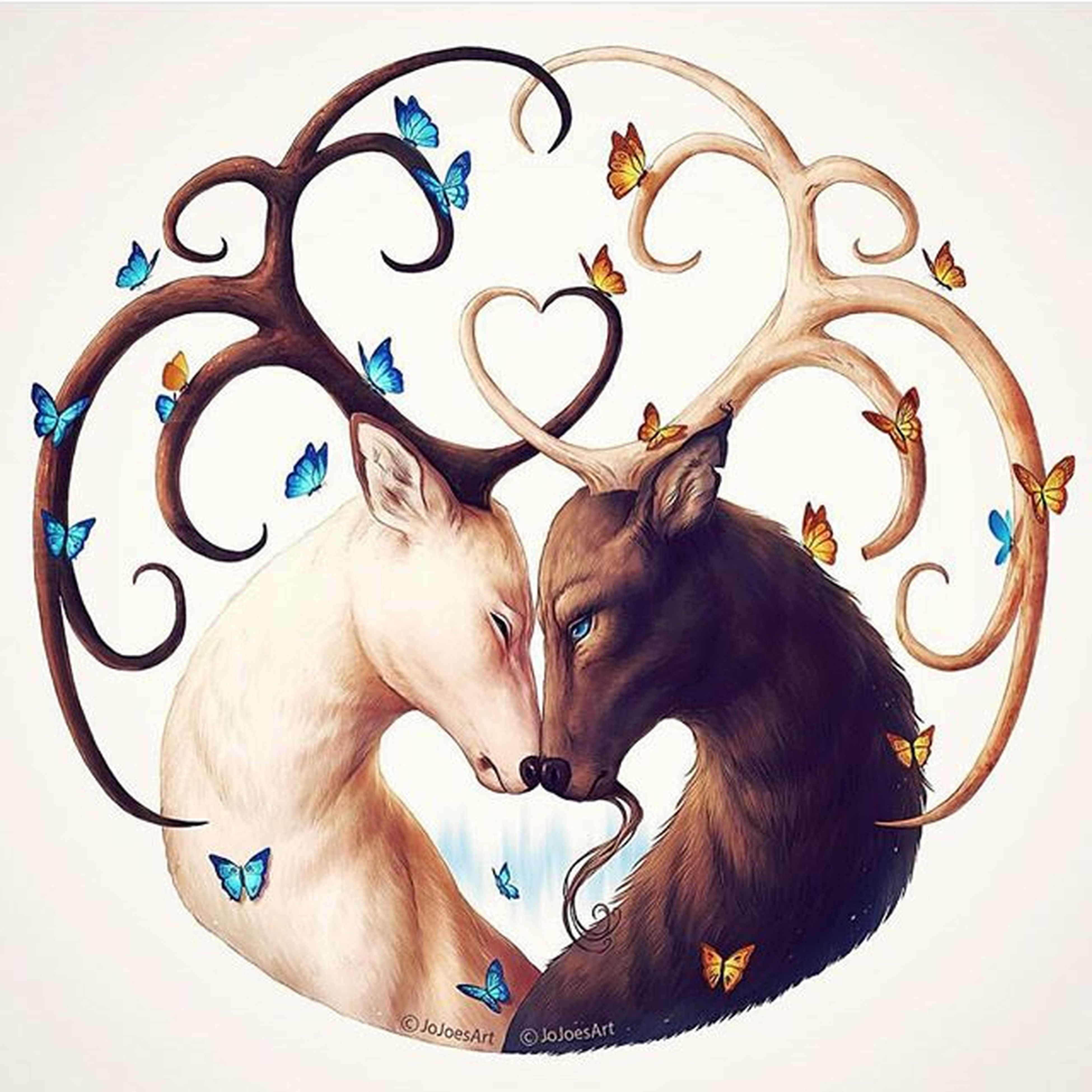 We find, what is true love between an animals? Hello World Waiting South From The Rooftop