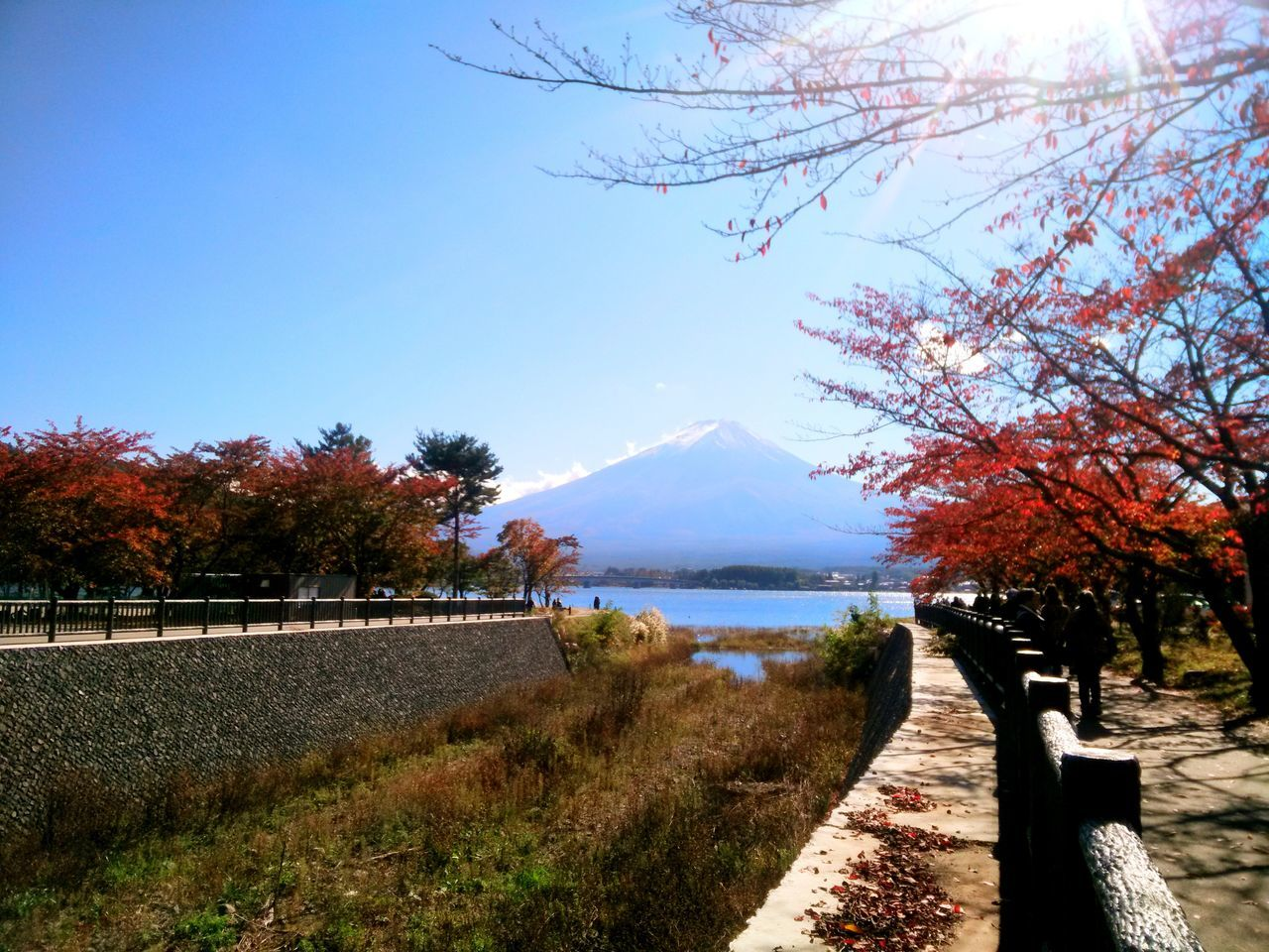 Fuji Mountain Kawafujiko Japan Hanging Out Journey Of Life Capture The Moment Relaxing Taking Photos From My Lens Viewpoint Landscape_Collection Hello World Enjoying Life Nature Photography Beauty In Nature Landscape Vacations Nature