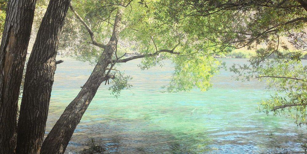 Fırat River Relaxing Nature Photography