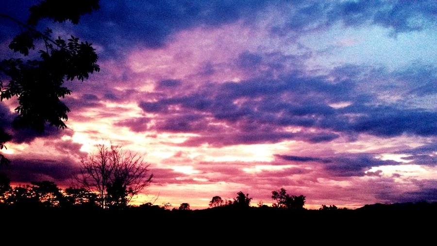 Try this guys :D i took this 5 days ago. First Eyeem Photo Sunset Nature_collection