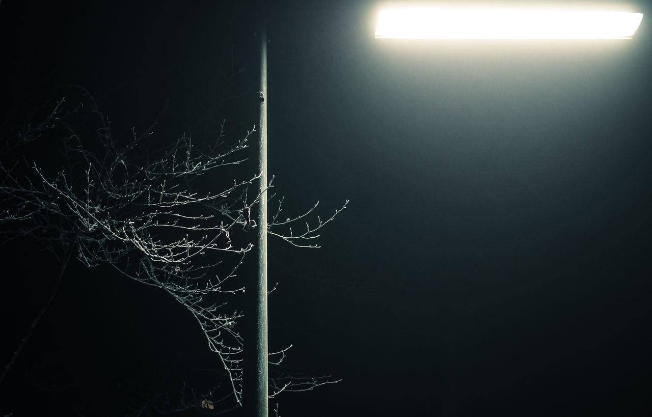 illuminated, night, glowing, no people, electricity, long exposure, outdoors, nature, close-up, sky