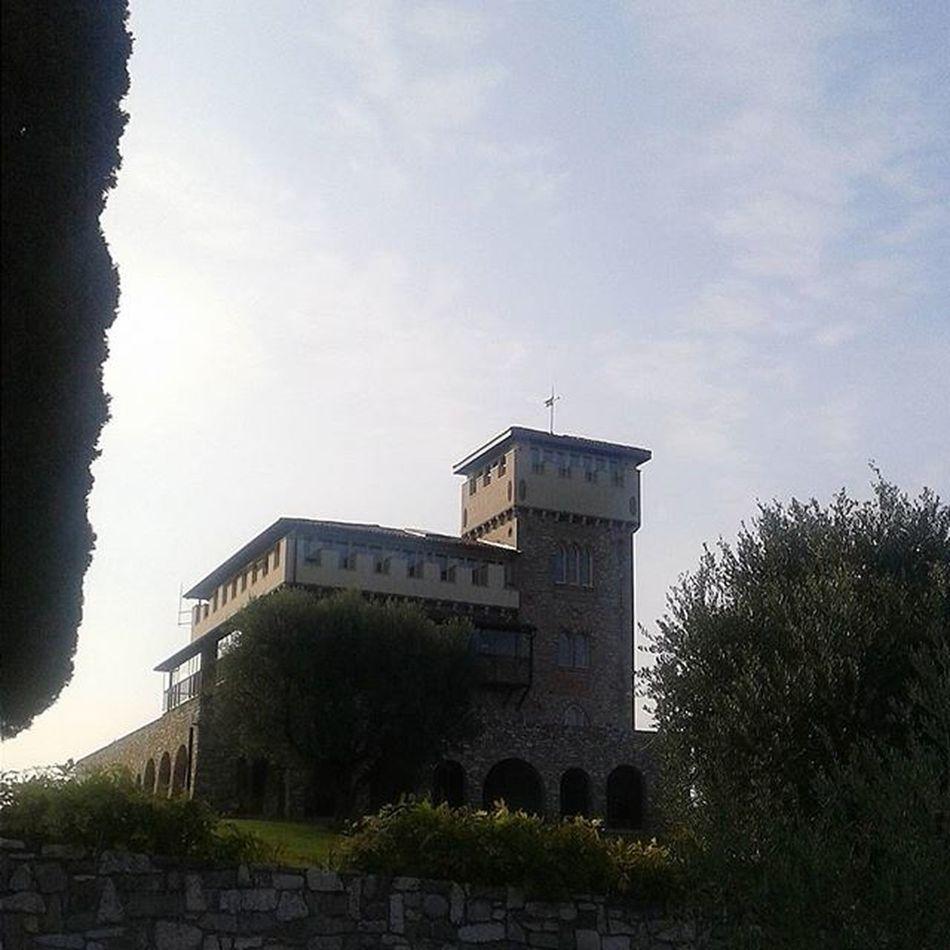 Unacasettapiccolinaincanada Desenzano Lagodigarda Vendemmia