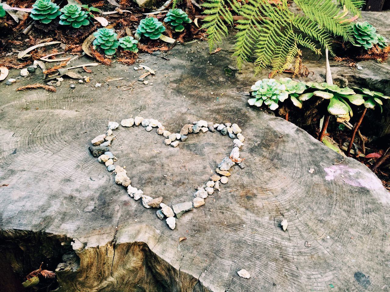 Heart Made From Stones On Wood