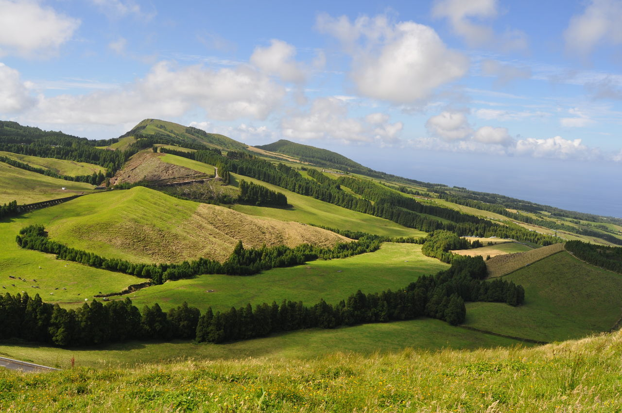 Landscape_Collection Landscapes With WhiteWall Landscape Nature Vulcanic Landscape Nature_collection Green Azores Portugal