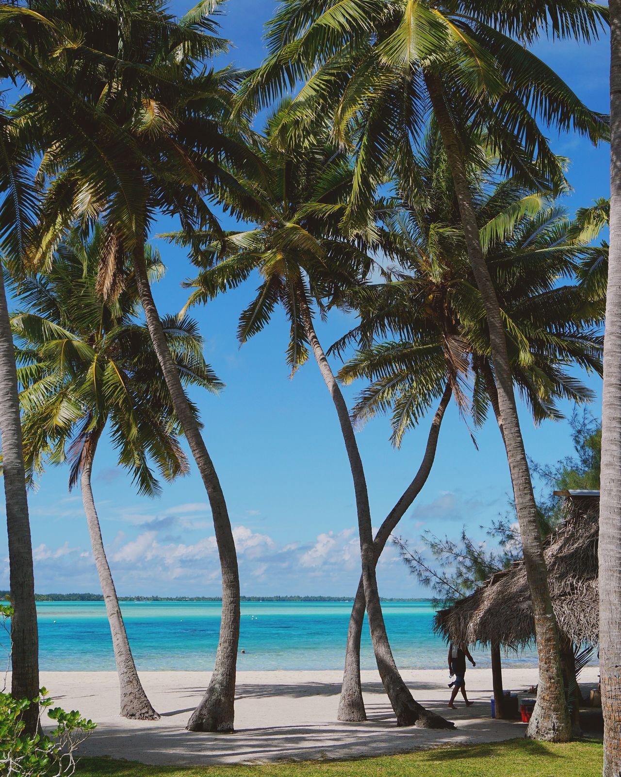 Beautiful stock photos of bora bora,  Anau,  Beach,  Beauty In Nature,  Blue