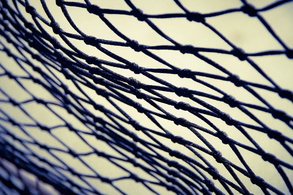 Backgrounds Close-up Day Extreme Close-up Fisher Net Full Frame Net Pattern Protection Repetition Safety Scenics Selective Focus