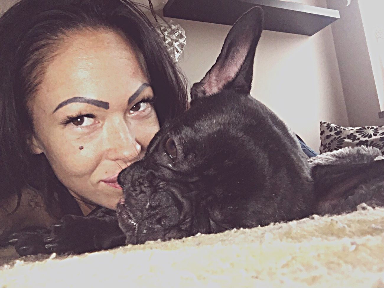 Francia bulldog, Nadine, Love You 🐾💋❤️ Hello World