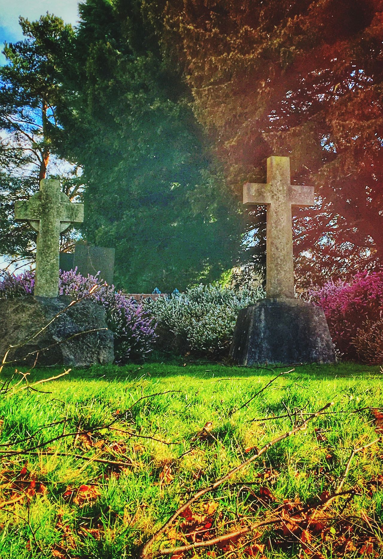 Calke abbey Tombstone Green Color Tree Nature Outdoors Beauty In Nature Cross Grave Graveyard Graveyard Beauty EyeEmNewHere EyeEmNewHere