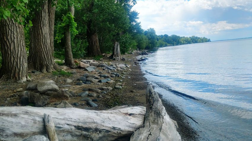 Taken at the Shrine at Isle Lamotte in Vermont..... A beautiful afternoon on the lake. Water Tree Nature Outdoors Beach Day Tranquility Tranquil Scene No People Sand Beauty In Nature Scenics Sky Nautical Vessel