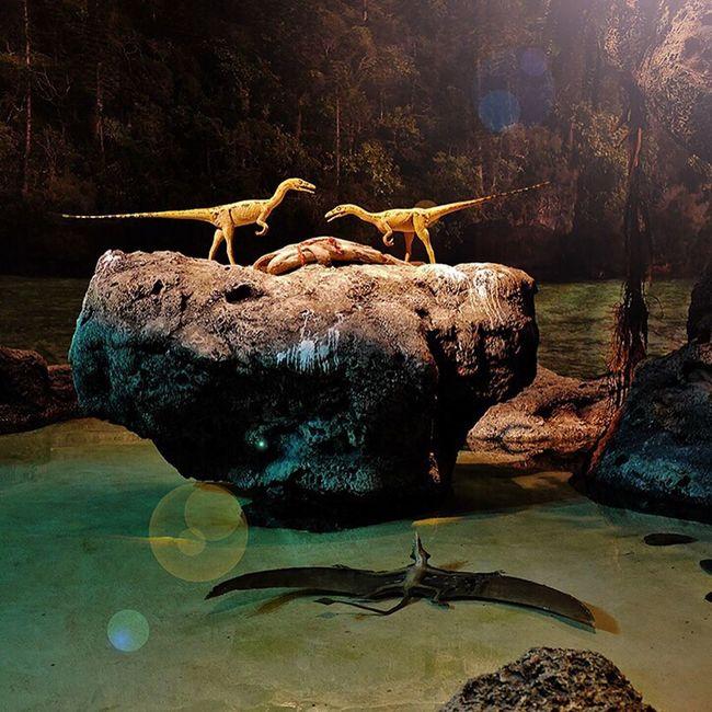 Dinowars... Germany Photo Animal GERMANY🇩🇪DEUTSCHERLAND@ Saarland Dinosaur Museum Streamzoo Family