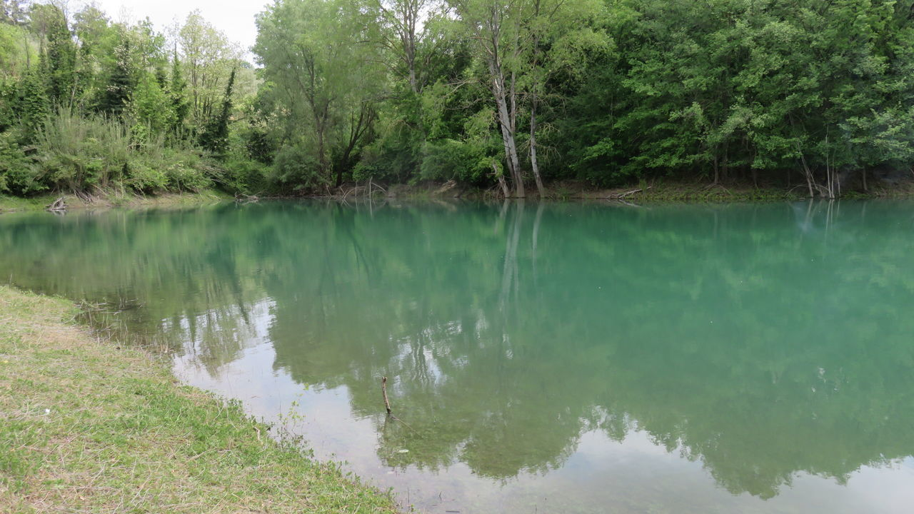 Beauty In Nature Diga Di Penne Lake Minimal Nature Plants In The Water Reflection Scenics Trees Trunk Trunk In The Water Trunks Turquoise Turquoise Water Water