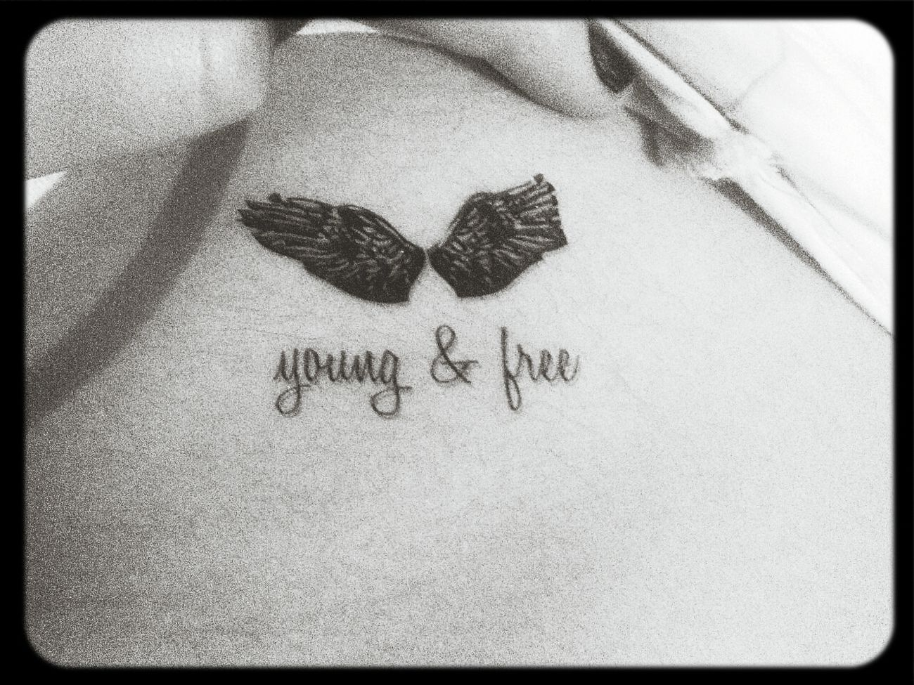 Young Wild And Free(; Forever Young Free Young&Free  tattos