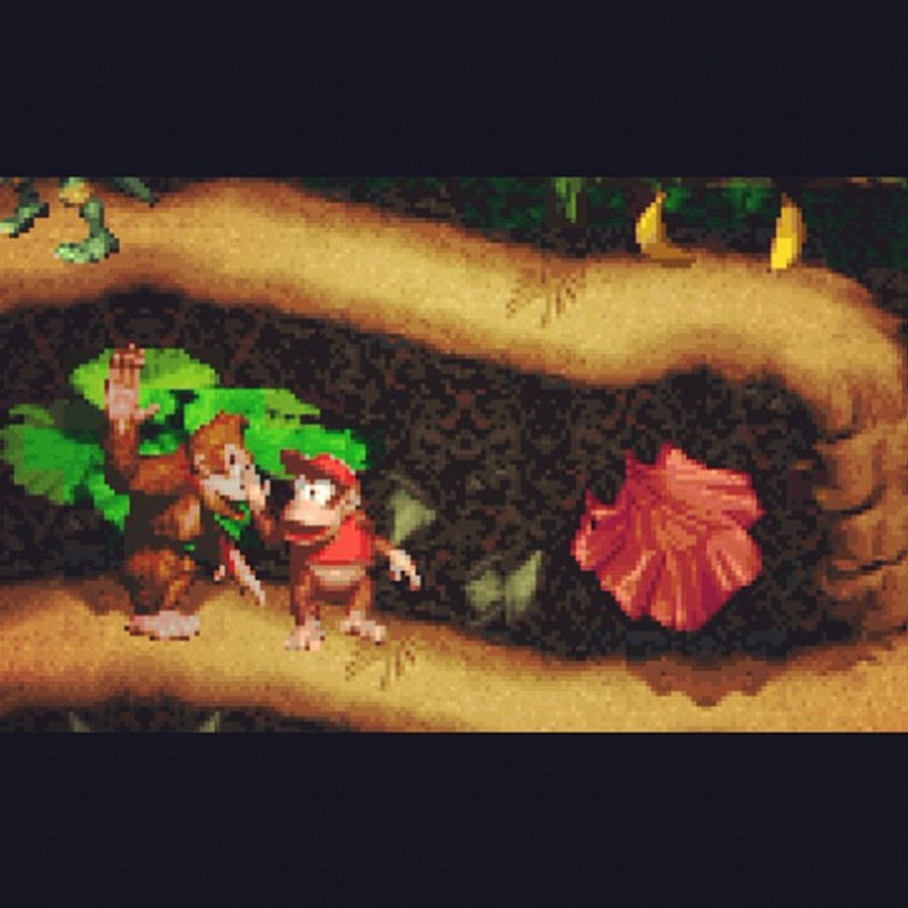 YES!!! Donkeykongcountry with DiddyKong in Supernintendo  90s ThrowbackThursday
