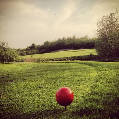 EyeEm Best Shots at Golf Club Stenerberg e.V. by Lea