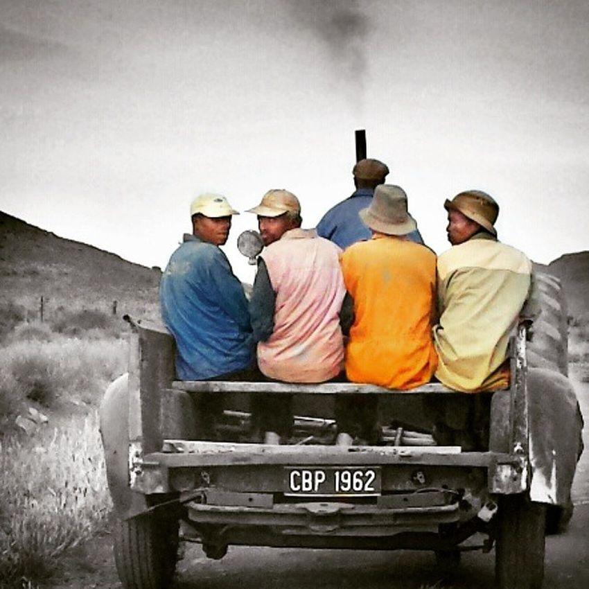 Colourfull travels..... Farmlife Farming Karoo Portrait Travel Transport Samsung SamsungGalaxyS4 Followforfollow Followme Karooheartland