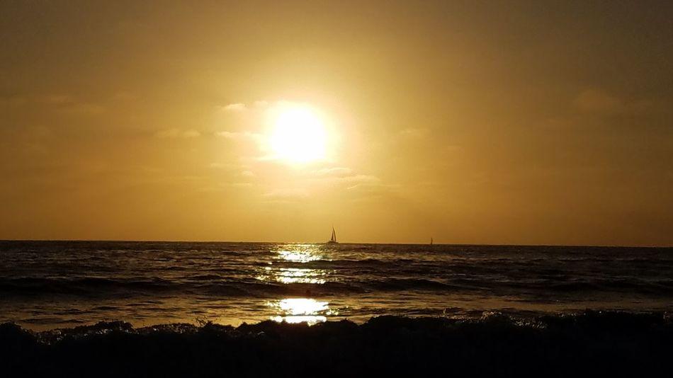 Sunset Sea Horizon Over Water Beach Beauty In Nature Outdoors