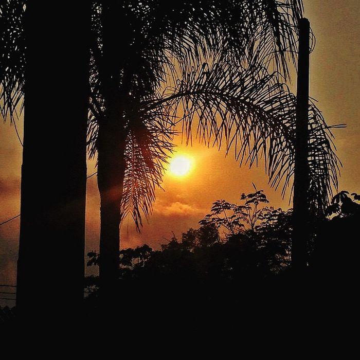 Beautiful sunset! Sunset Sunset Silhouettes Sun ☀ Eye4photography  Nature Landscape Taking Photos Follow4follow Light And Shadow EyeEm Best Shots