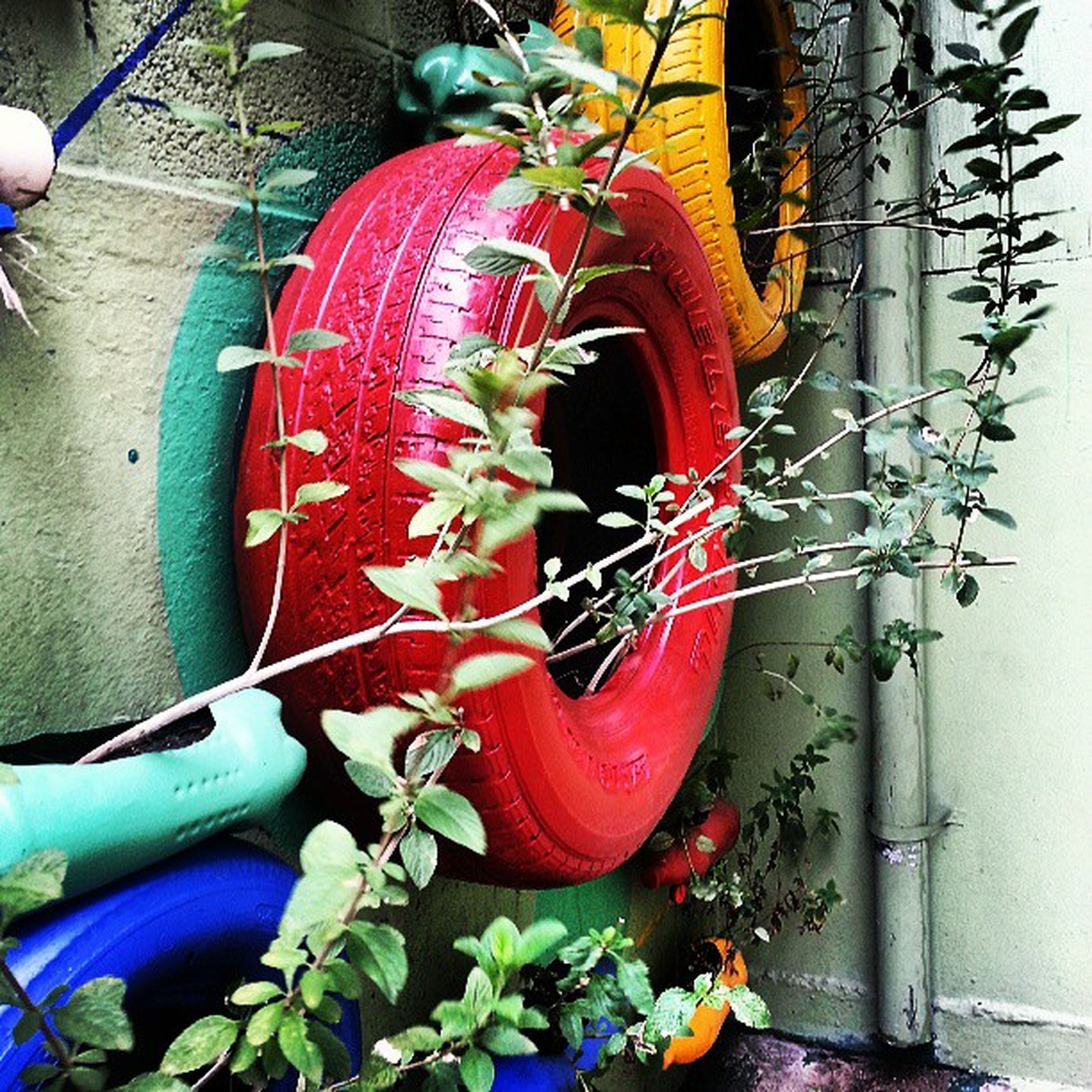 wall - building feature, built structure, potted plant, plant, red, architecture, building exterior, no people, metal, day, wall, outdoors, bicycle, hanging, multi colored, house, graffiti, close-up, art, wheel