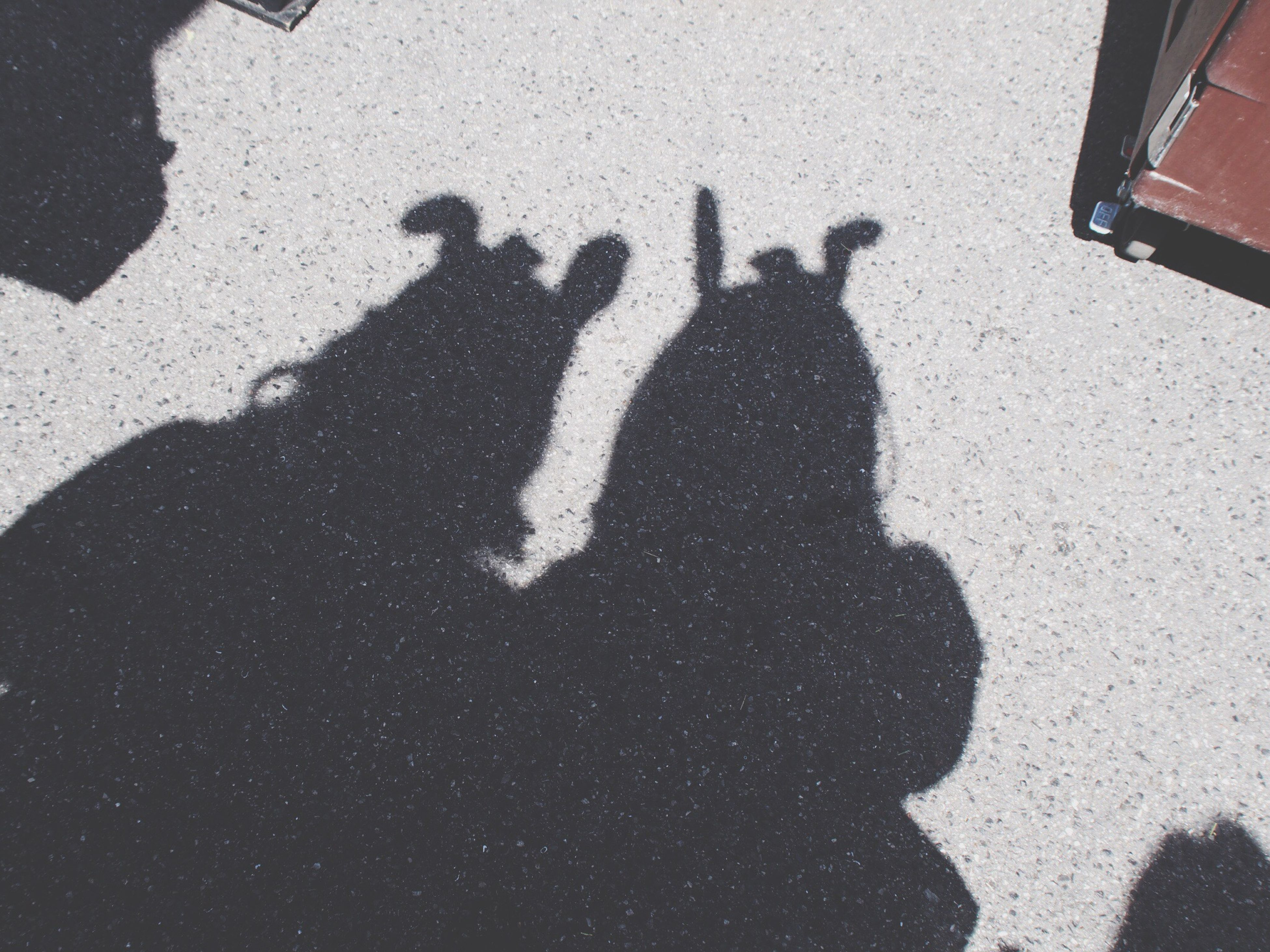 shadow, high angle view, togetherness, lifestyles, men, leisure activity, street, focus on shadow, bonding, sunlight, love, unrecognizable person, outdoors, person, friendship, road, day, silhouette