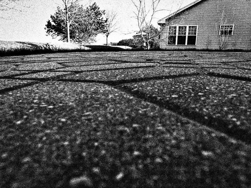 Up Close Street Photography Brick Patio Blackandwhite Black And White Black & White Black And White Photography House Tree House Window Looking Far Away