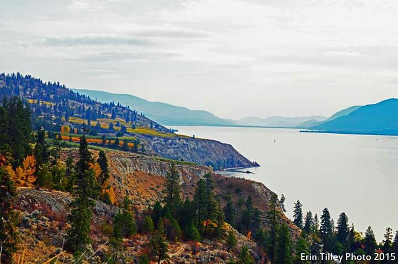 Fall Colours Okanagan Naramata Beautiful British Columbia