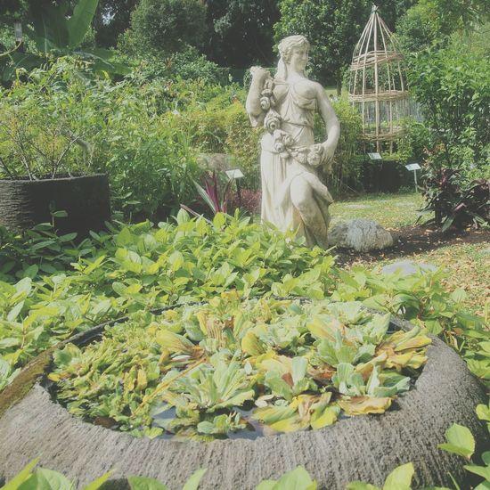 Statue Garden Nature