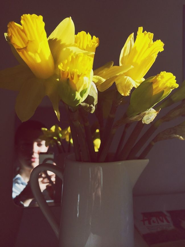 Spring Flowers in our office The Ks Peekaboo