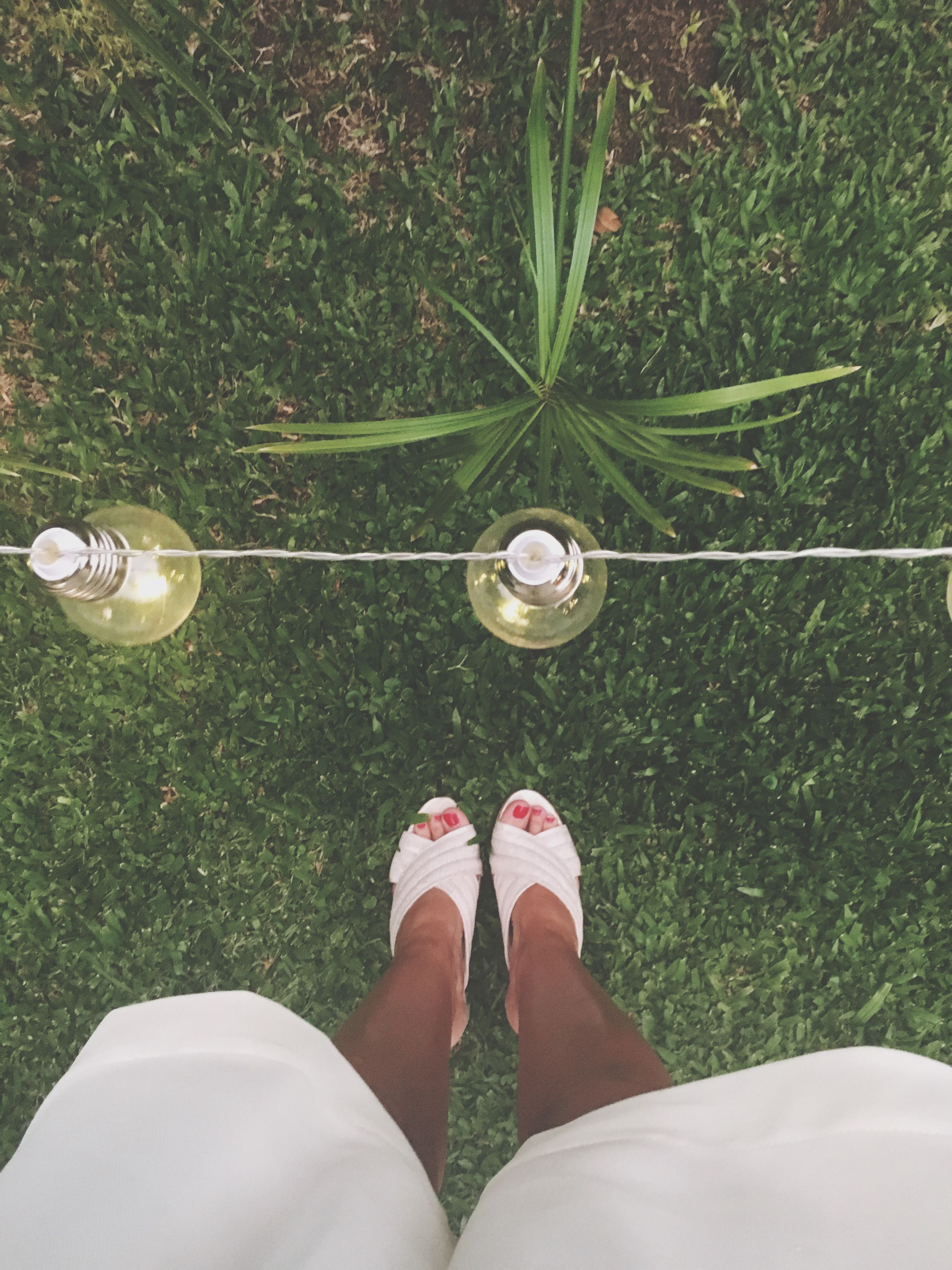 low section, human foot, human body part, personal perspective, directly above, standing, human leg, shoe, high angle view, one person, grass, one woman only, only women, women, pair, people, adult, adults only, nail polish, flip-flop, outdoors, close-up, day
