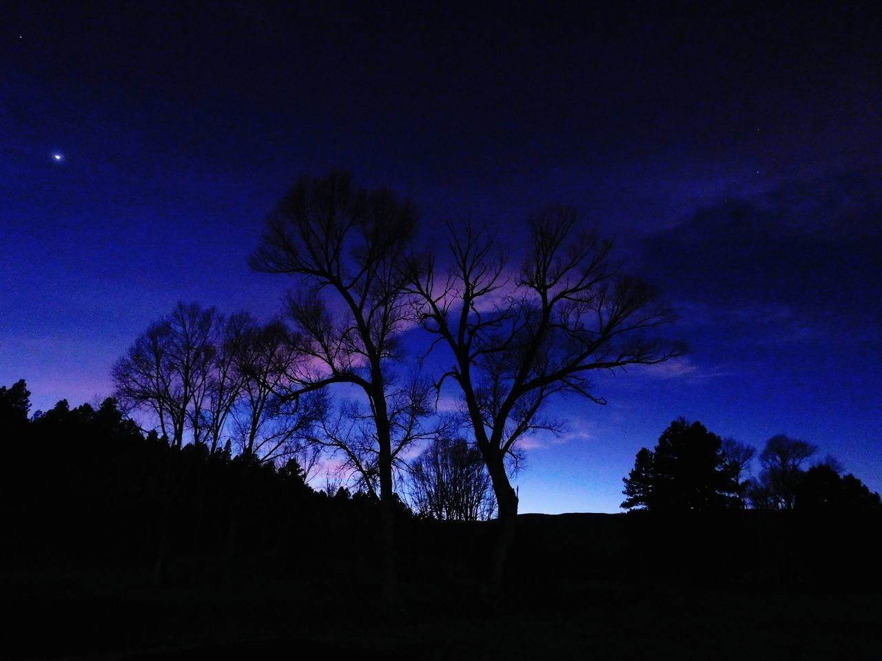 Tree Silhouette Star - Space Low Angle View Sunset Beauty In Nature Newmexicosunset Newmexicoskies Newmexicosunsets Newmexicophotography NewMexicoTRUE Newmexicoskys Newmexicomountain Rural Scene