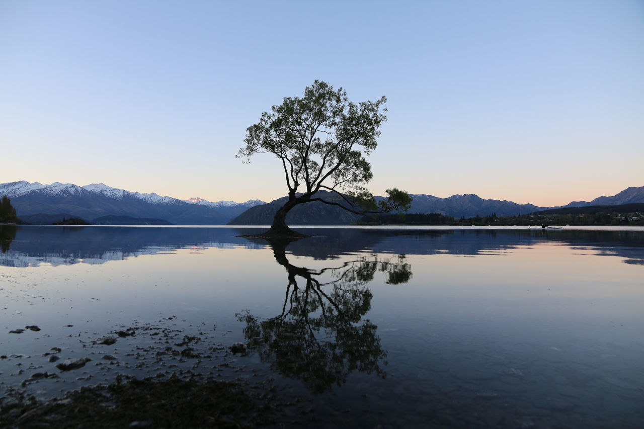 Beautiful stock photos of nacht, reflection, water, nature, tree