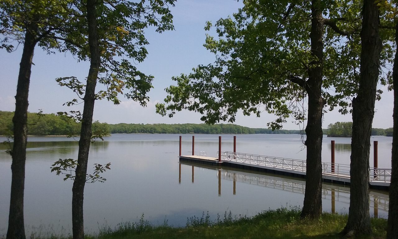 Tree Water Lake Tranquility Landscape Reflection Nature Tranquil Scene Scenics Sky Beauty In Nature Outdoors Day Cloud - Sky Horizon Over Water Boat Dock Boat Dock Bridge Portrait