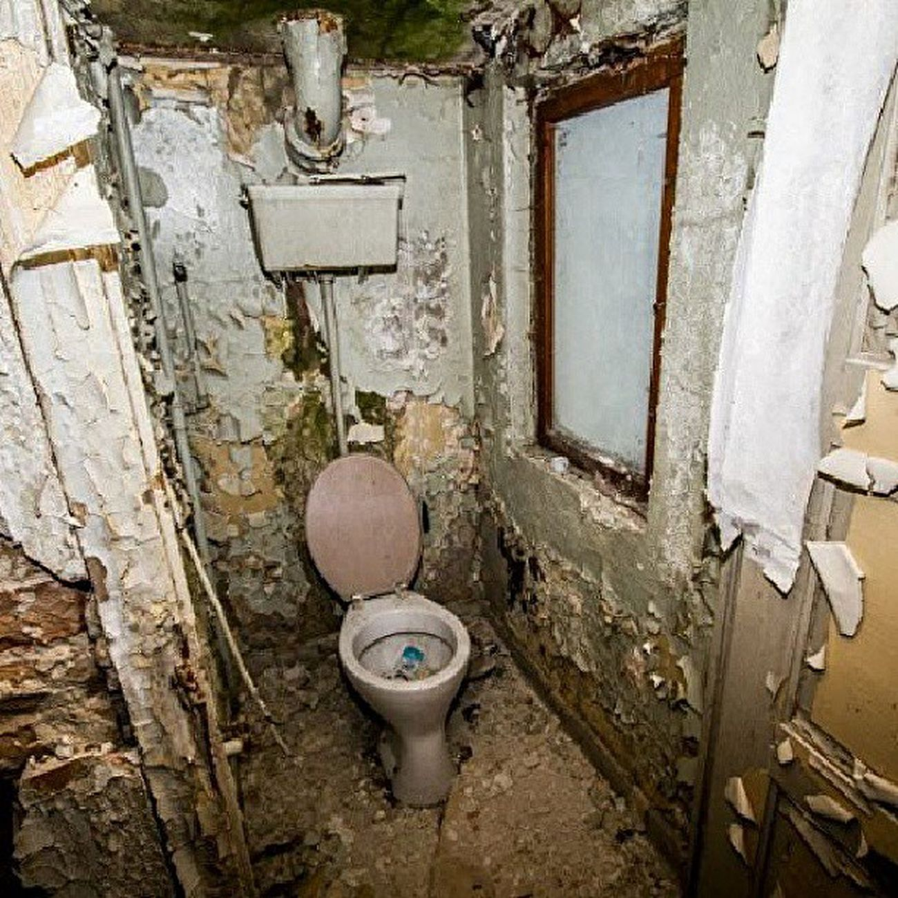 Abandoned Urbanexplotation Lost Lostplaces old house ruin ruins instagrammers instahub ahlbeck germany mecklenburg vorpommern stones toilet