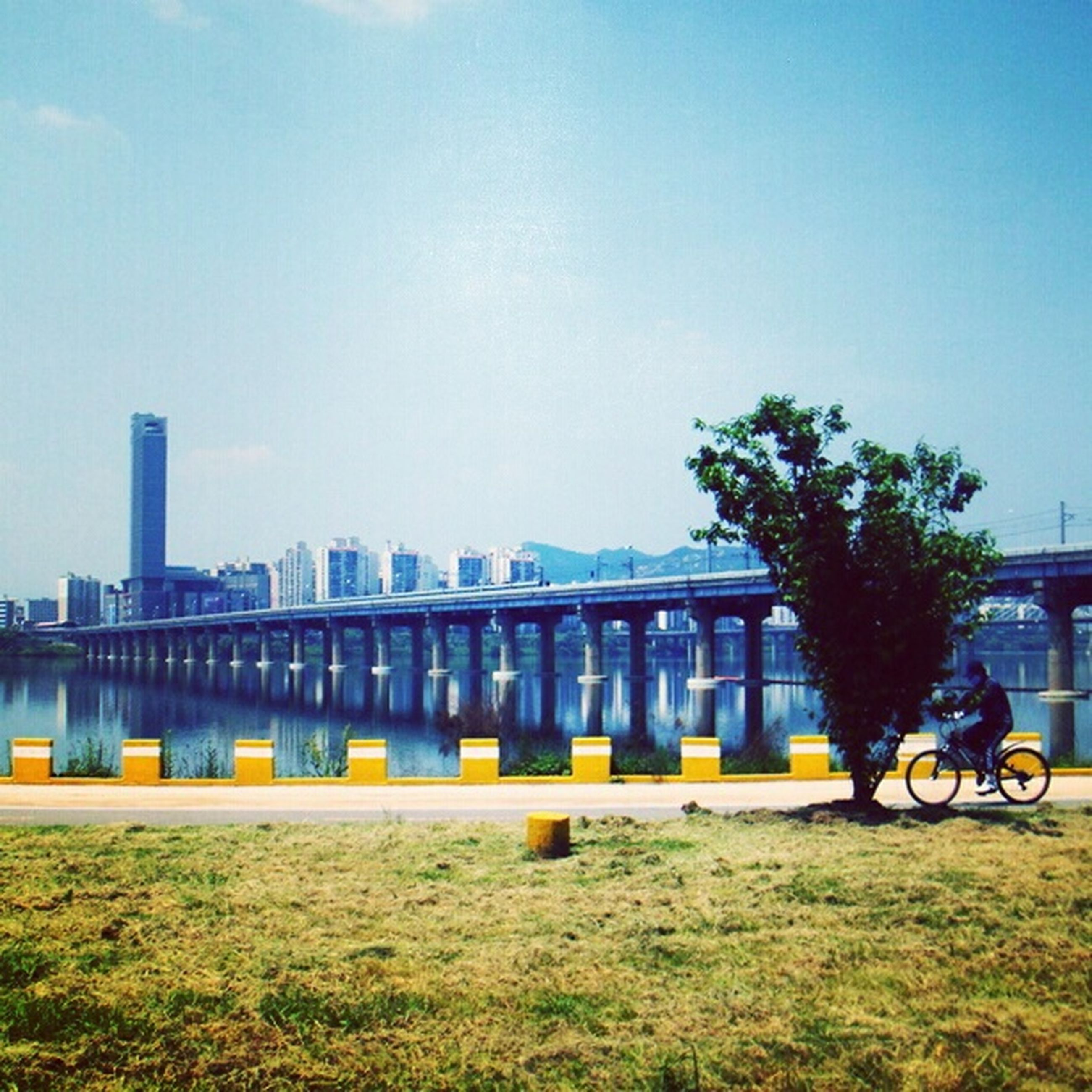 architecture, built structure, transportation, bicycle, clear sky, building exterior, copy space, land vehicle, mode of transport, bridge - man made structure, city, grass, tree, sky, railing, connection, river, incidental people, outdoors, blue