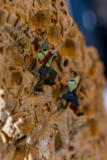 These little guys are climbing a piece of fossil contenting rock in my study. Cliff Detail Fashion Figures Fossil Fun Lifestyle Little Love M Miniature Nature Old People Photography Rock Small Stoneol