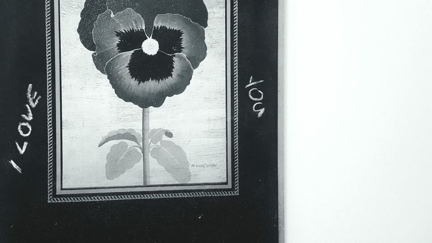 I Love You ❤ Chalk Board Noticeboard Black & White Cropped Flower Home Decor Wall Hanging Indoors  No People Close-up