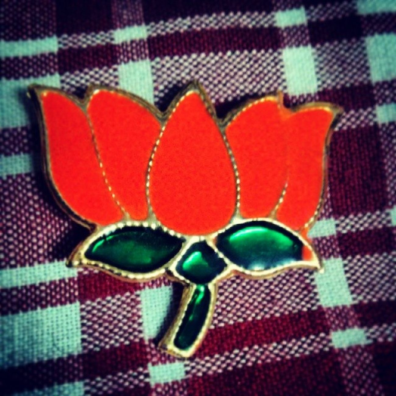 And the political games begin... BJP Symbol Political Parties election time Chandigarh Instapic