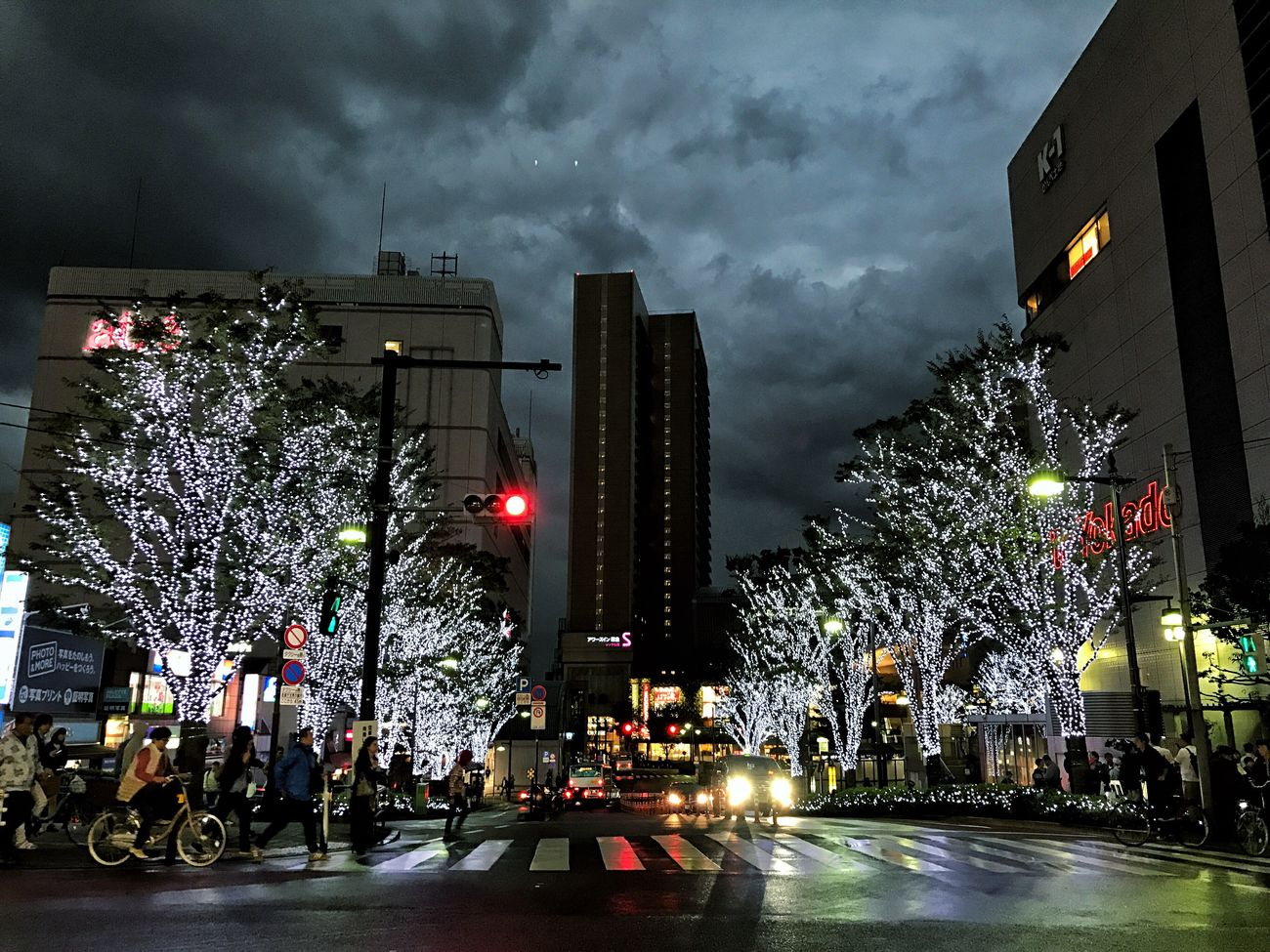 Illuminated Tree Street City Architecture Night Christmas Lights Built Structure Building Exterior Sky IPhoneography Outdoors Road Cloud - Sky No People Christmas Decoration Storm Cloud Christmas Tree Tokyo Japan Streetphotography EyeEm Streets Eye4photography  December Nightphotography