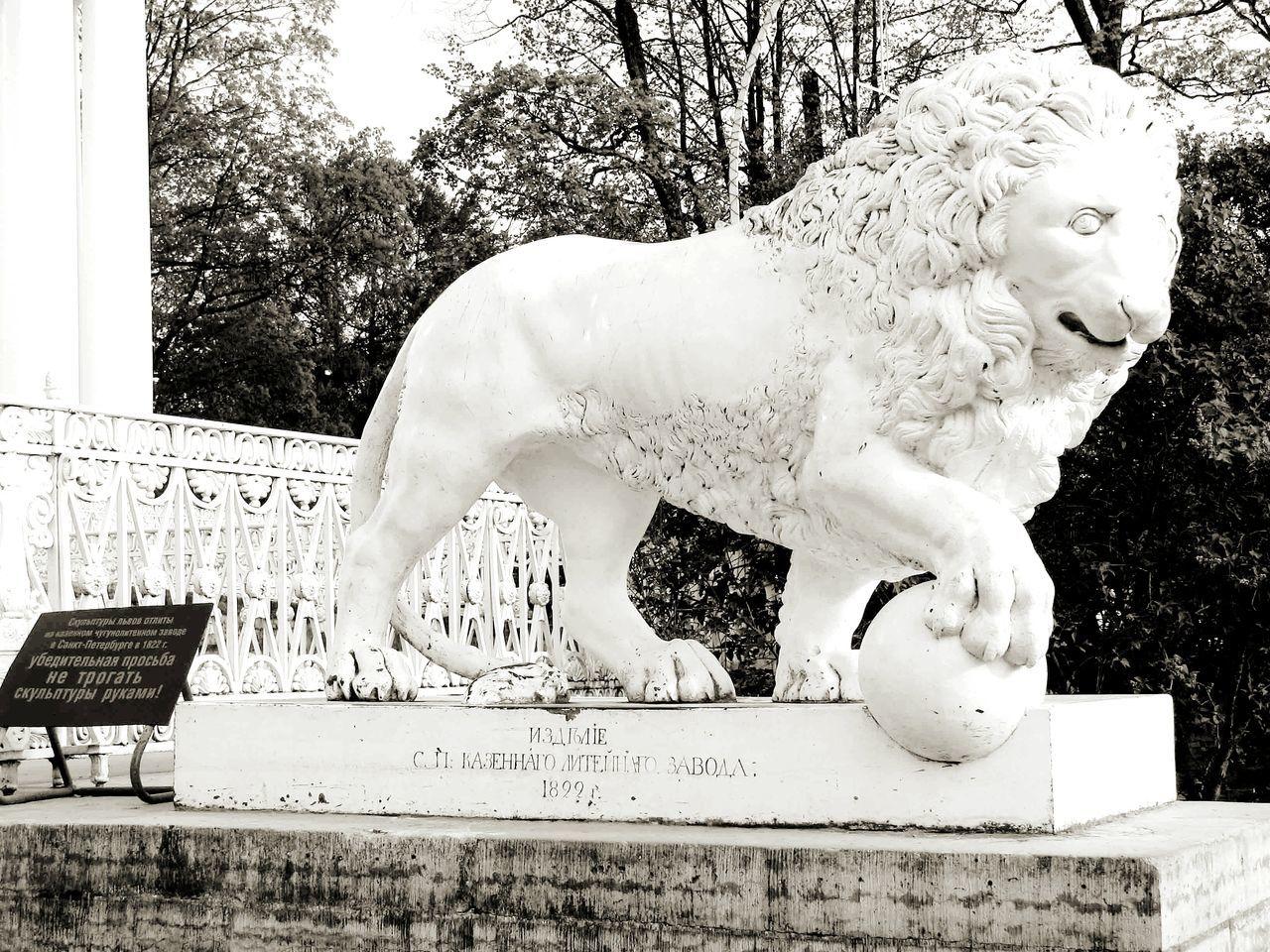 Taking Photos Lion Sculpture Elagin Palace Elagin Island Tree Photography Eyeemphotography Saint Petersburg Russia