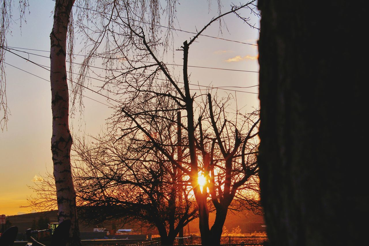 sunset, sun, tree, bare tree, nature, lens flare, beauty in nature, sky, sunbeam, sunlight, silhouette, no people, outdoors, tree trunk, scenics, tranquil scene, tranquility, branch, close-up, day