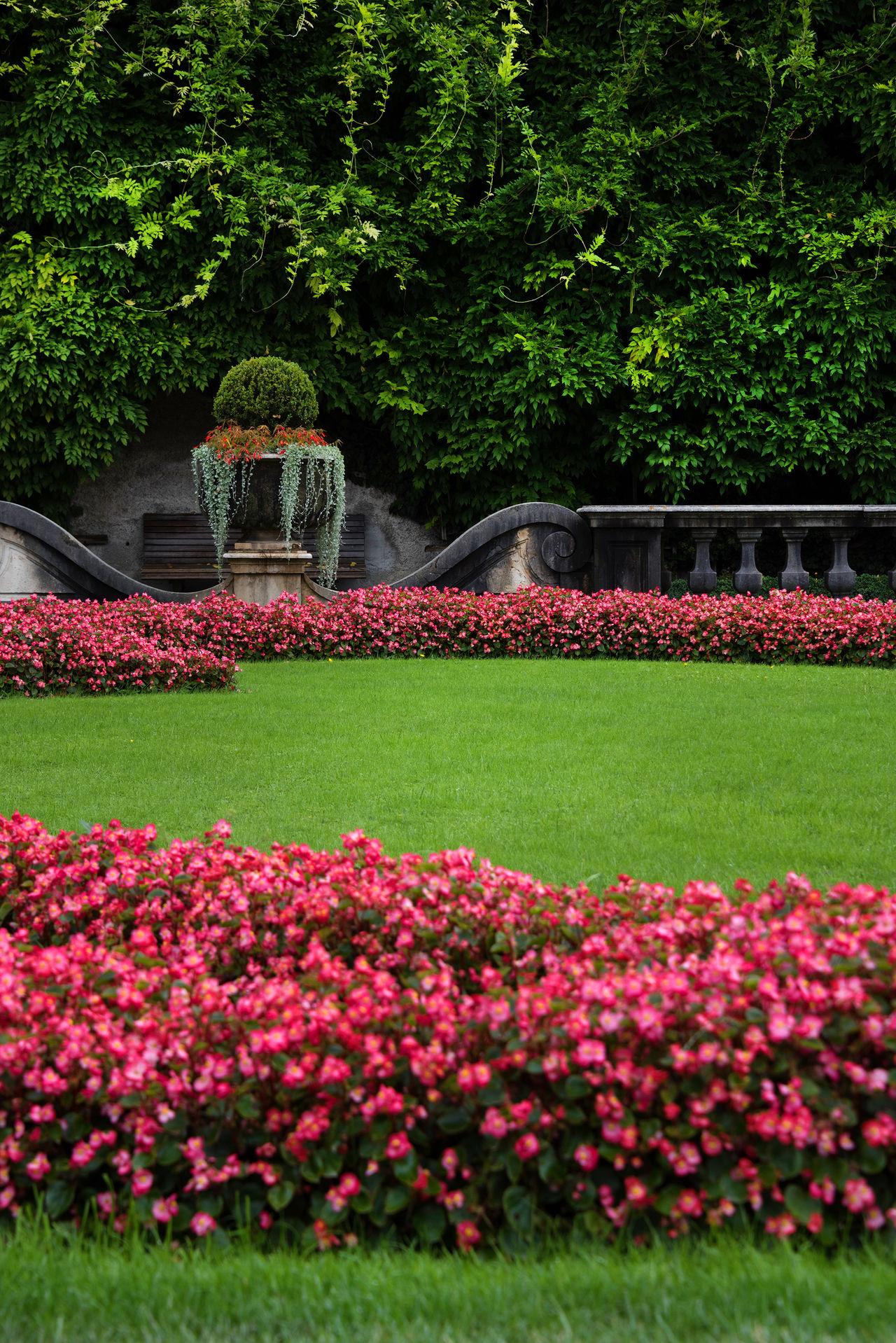 Nikon D810 Architecture Architecture_collection Europe Europe Trip European  Landmark Mozart MozartGeburthaus Mozartstadt Park Tourism Travel Travel Destinations Travel Photography