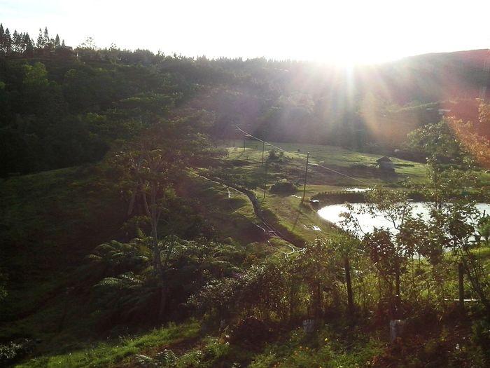 Good morning! Eyeem Philippines EyeEm Best Shots - Sunsets + Sunrise EyeEm Best Shots - Nature Nature_collection