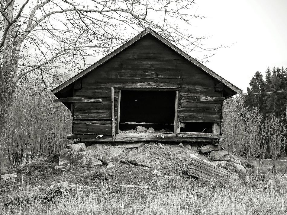 Farm Countryside Country Life Farm Life Imperfection Is Beauty Blackandwhite Black And White Photography Black And White Black & White Farm Animals EyeEm Masterclass Naturelovers Nature On Your Doorstep Animal Themes Spring Old Buildings Landscapes Outdoors Welcome To Black The Secret Spaces