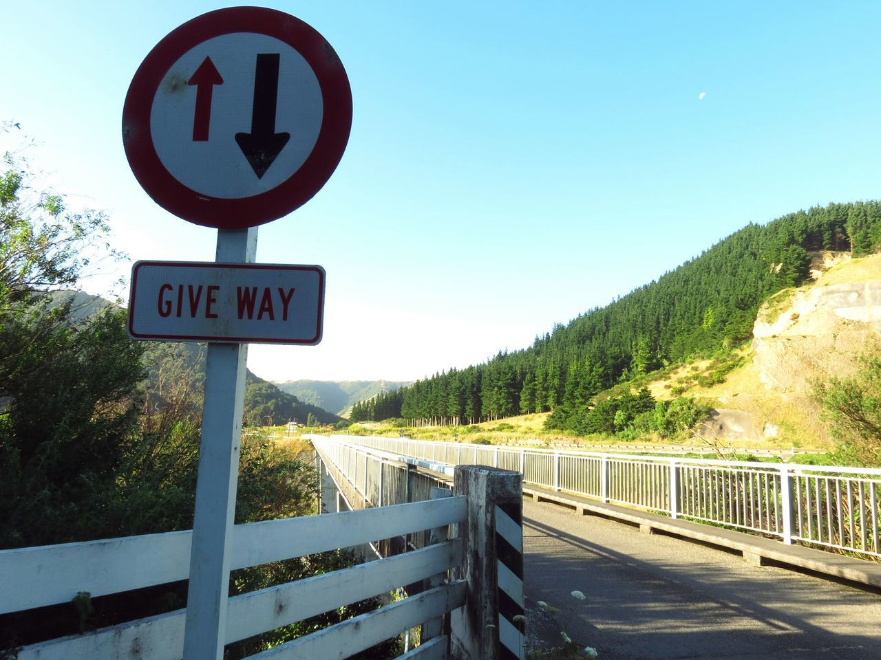 Blue Road Sign Sky Tree Outdoors No People Day Environment Tree Beauty In Nature Backyard Home New Zealand Fence Row Lined Up Miles Away Scenic Landscapes New Zealand Scenery Manawatugorge Ballance Bridge Sunlight Sunbeam Landscape