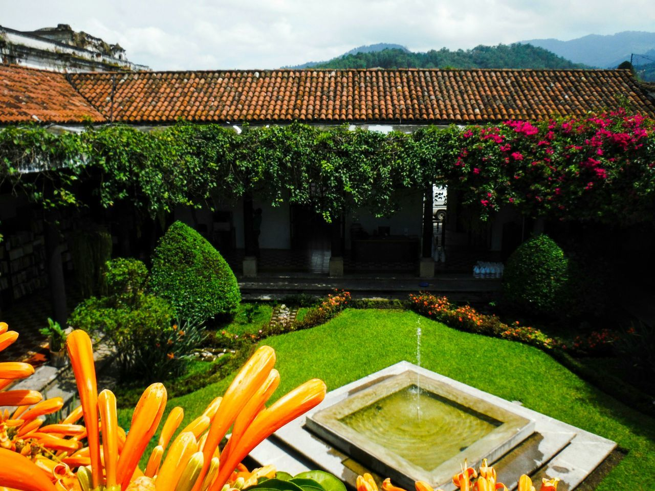 Colonial Colonial Architecture Colonial Style Old Buildings Red Tile Roofs Red Tile Roof Tile Rooftop Rooftop View  Guatemala View Guatemala Antigua Antigua, Guatemala AntiguaGuatemala Antigua Guatemala Plant Growth Tranquility Ornamental Garden Garden Fountain Fountain Plaza Quaint  Peaceful Place Peaceful View