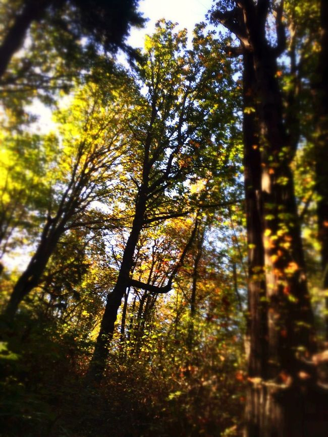 Just listen. EyeEm Best Shots Discoverypark Seattle EyeEmBestEdits